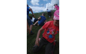 Как здорово покататься по траве!